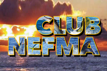Club NEFMA Website Logo